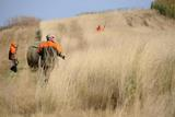 Upland Game Bird Hunting South Dakota.