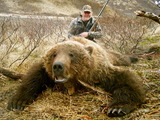 Brown Bear Hunting Alaska Trophy Brown Bears at it