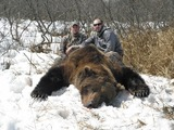 Brown Bear Huntin Alaska, Alaska Grizzly Bear Hunting