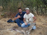 Black Tail Deer Hunting California