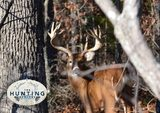 Trophy Deer Hunts Missouri.
