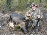 Alberta Moose Hunting Outfitters