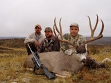 Mule Deer Trophy Hunts In Wyoming.