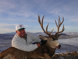 Mule Deer Hunting Savery Creek Hunting Outfitters.