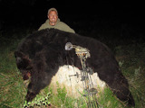 Savery Creek Outfitters, Archery Bear Hunts Wyoming