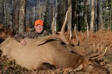 Colorado Elk Hunting | Elk Hunting Lodge