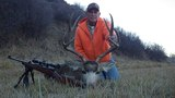 Mule Deer Hunting Colorado.