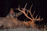 Colorado Trophy Elk Hunts.
