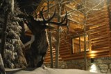 Colorado Hunting Lodge