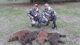 Californioa Wild Pig Hunting Outfitters