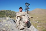 Trophy Ram Hunting in California