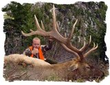 Montana Elk Hunting Outfitter.