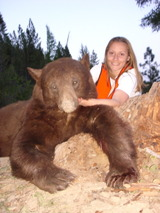 KoLiss Montana Black Bear