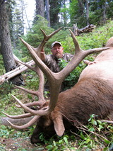 Monster Archery Bull