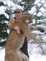 Mountain Lion Hunt in Winter Cody Carrs Hunting Adventures.