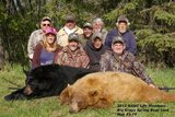 Bear Hunting Manitoba