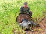 Turkey Hunting South Carolina Low Country