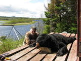 Canada Black Bear Hunting Guides