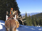 Pack in Elk Hunting in Colorado.