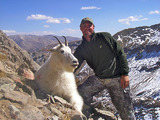 Colorado Mountain Goat Hunts.