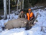 Trohy Elk Hunting in Colorado.