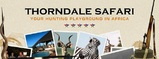 Thorndale Safaris