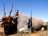 Big Game Trophy Hunts in South Africa.