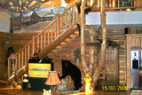 Wisconsin Luxury Deer Hunting Lodge