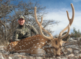 Axis Deer Hunting in Texas.