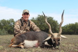 Blackbuck Hunts