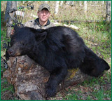 Archery Black Bear Hunting Outfitters in Alberta Canada.