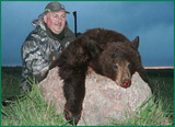 Black Bear Hunting Alberta Canada.