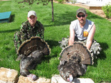 Kansas Rio Grande Turkey Hunting Irish Creek Outfitters.