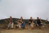 Trophy Deer Hunts Texas Recordbuck Ranch.