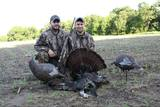 Ilinois Turkey Hunting Outfitters Western Illinois Trophy Outfitters.