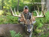 Allegheny Trophy Whitetails, Nice Rack