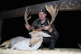 Trophy Fallow deer Hunting in Tennessee.