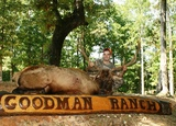 Elk hunting at Goodman Ranch.