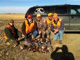 Hunting Pheasant in South Dakota is Pheasant Hunting Heaven.