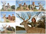 Texas Trophy Hunting Outfitters.
