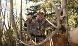 New Mexico Elk Hunts.
