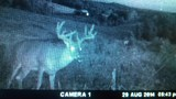 Southern Ohio Deer Hunting Guides and Outfitters.