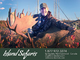 Trophy Moose Hunting - Island Safaris