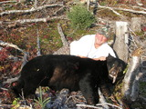 Huge black bears are very common in our area!