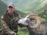 Stone Sheep Hunting BC.