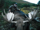 Mountain Moose Hunt