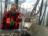 Scapegoat Wilderness Outfitters, Mule Deer Hunts Montana.