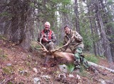 Gospel Mountain Outfitters, Idaho Elk Hunts