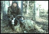 Standing Rock Hunting Preserve, Tennessee Ram Hunting.