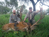 Caza y Safaris, Red Stag Hunts Argentina